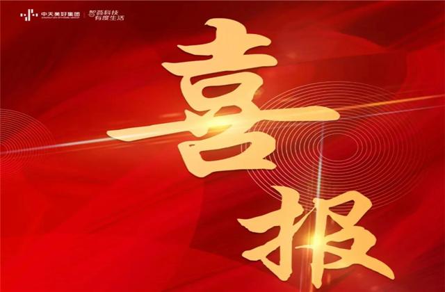"""中天美好集团蝉联""""2021长三角城市群房地产公司品牌价值TOP10"""""""